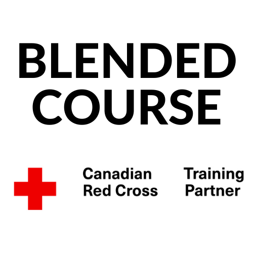 Red cross standard first aid blended